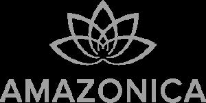 AMZZ Logo