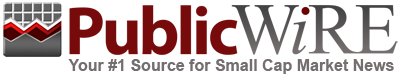 Public Wire Logo