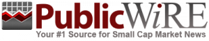 PublicWire Logo