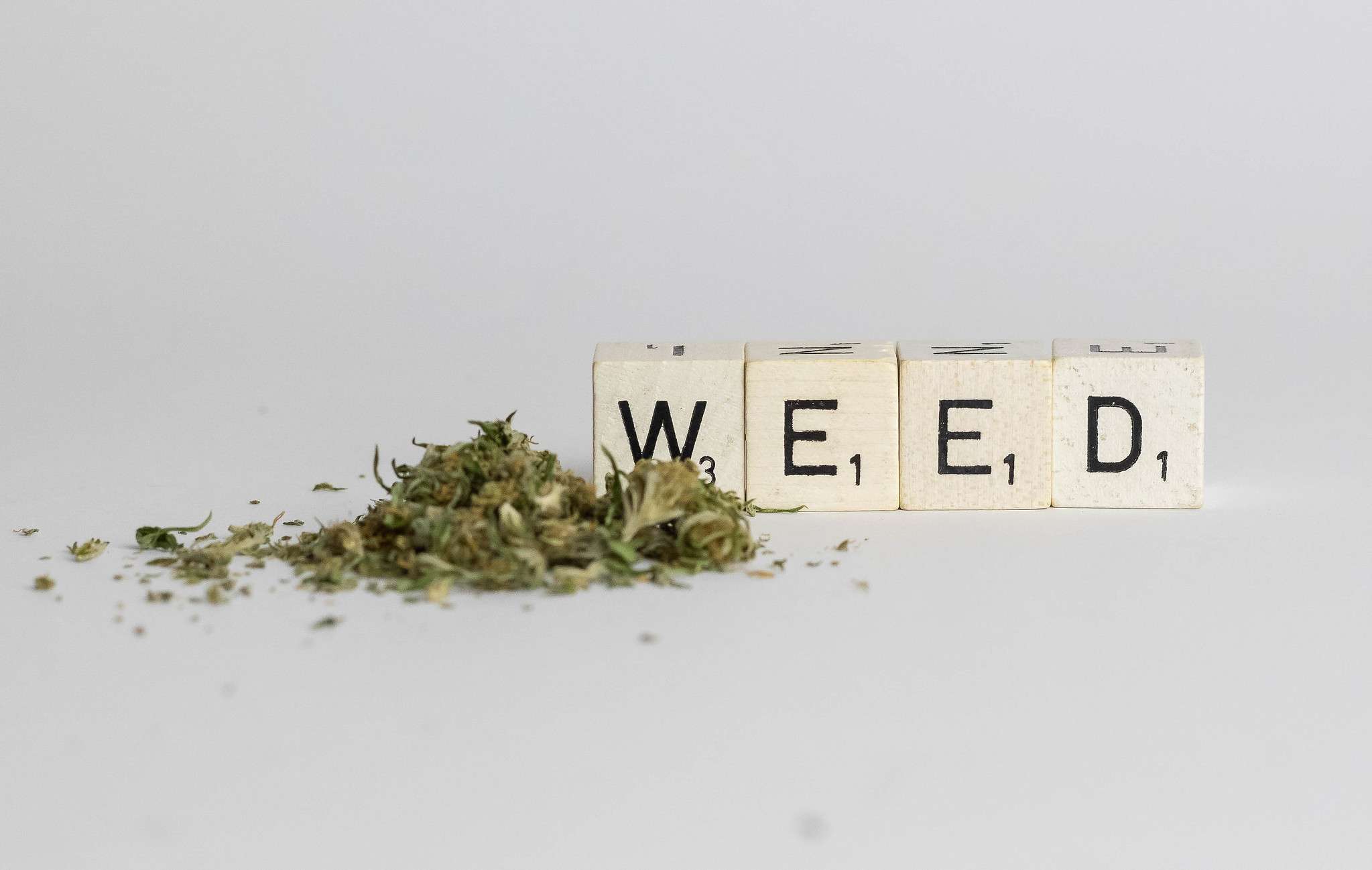 Aleafia Health Leads Course For Cannabis Stocks | PublicWire