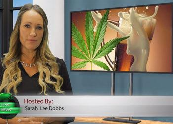 Cannabis   PublicWire